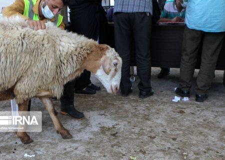 ایجاد ۲۵۰ پایگاه ثابت و سیار برای دریافت نذورات عید قربان در خوزستان