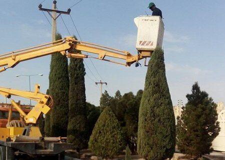 اجرای عملیات هرس و فرمدهی درختان
